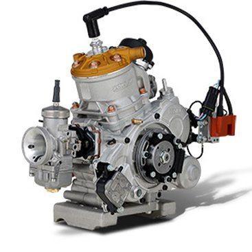 Vortex Rok GP Engine